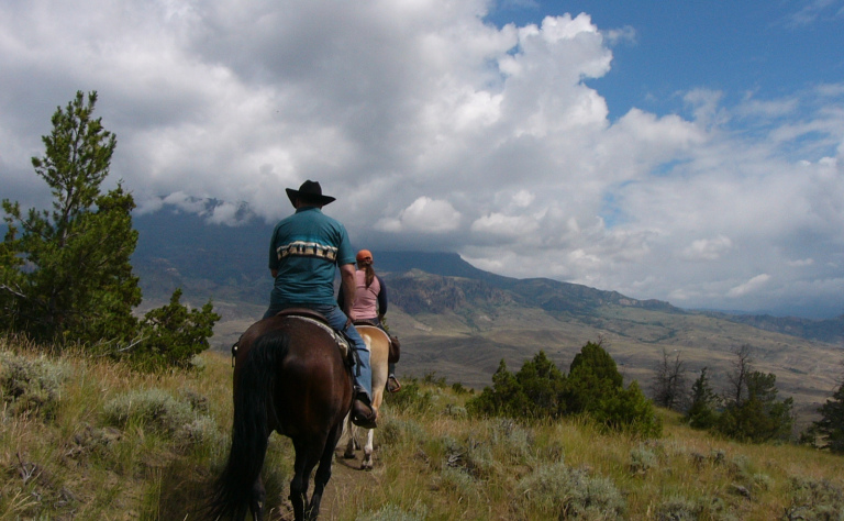 Wyoming or Bust: Grilled Rib Eye Steak Cut the CowboyWay