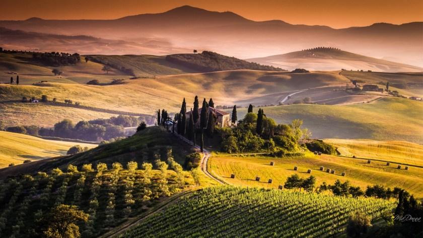 tuscany-wine-wallpaper-4