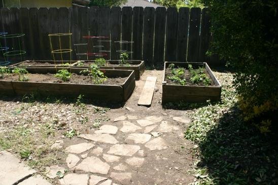 Spring Garden (19)