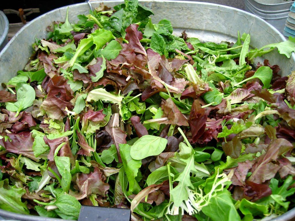 Salade Mesclun – A Provencal Mixed GreensSalad