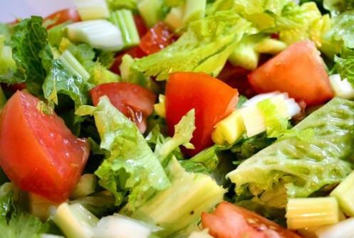 Salad cover