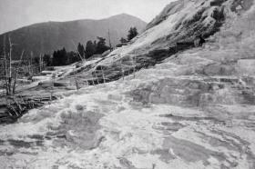 1872 mammoth hot springs2