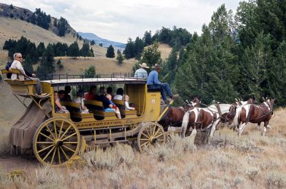 136250-stagecoach-from-roosevelt-lodge-loaded-with-passengers