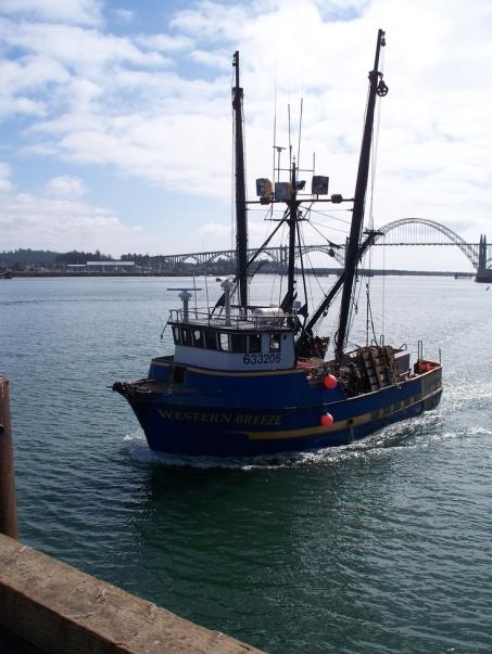 fishing new port