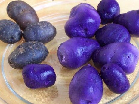 Potatoes-purple-free-use