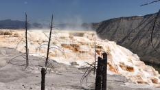 Yellowstone - David (46)