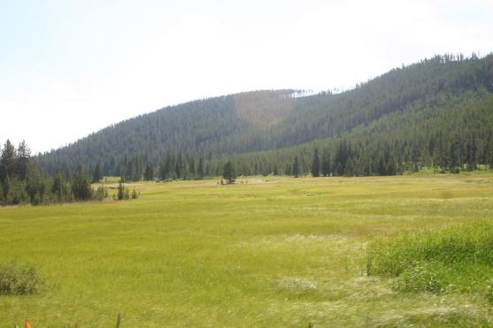 Yellowstone Day 6 (134)
