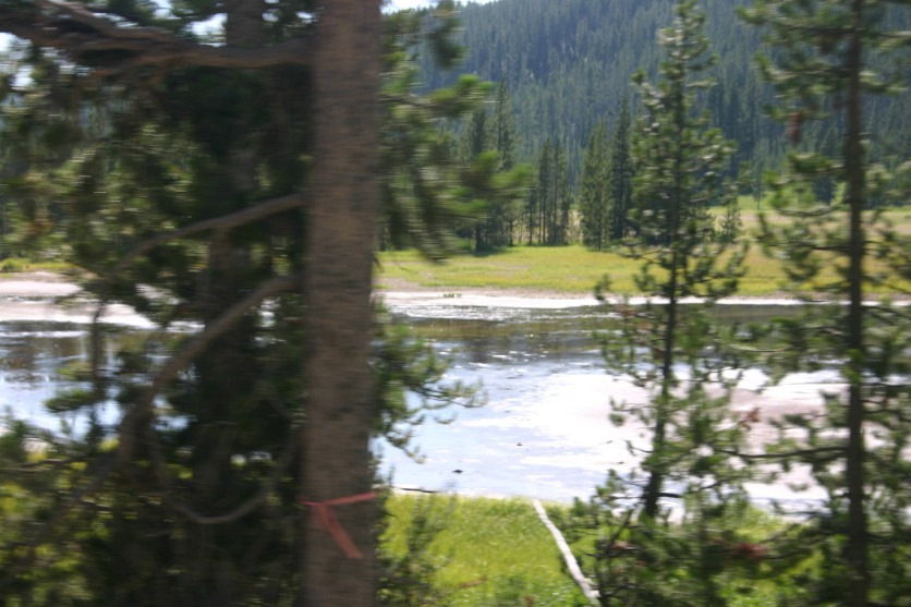 Yellowstone Day 6 (137)
