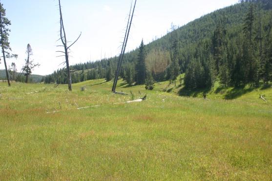 Yellowstone Day 6 (143)