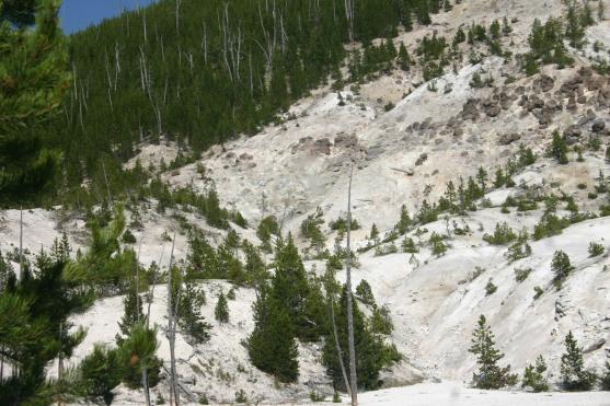 Yellowstone Day 6 (146)