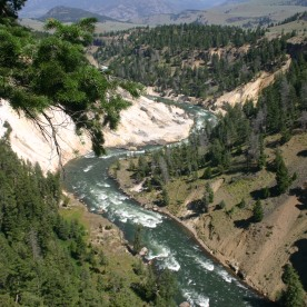 Yellowstone Day 6 (48)