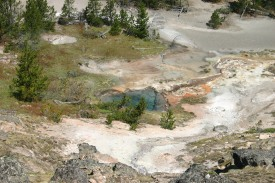 Yellowstone Day 7 (18)