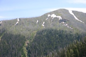 Yellowstone Day 7 (42)