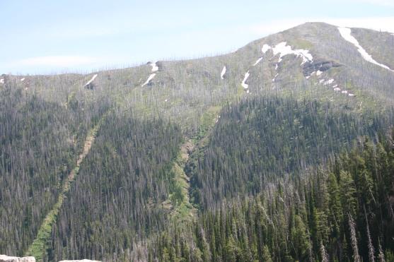 Yellowstone Day 7 (44)