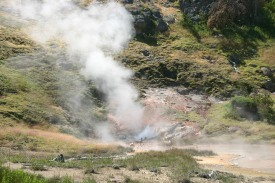 Yellowstone Day 7 (8)
