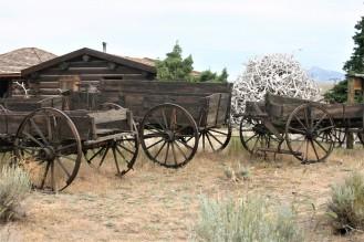Yellowstone Day 8 (1)