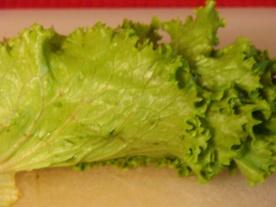 taco lettuce 2