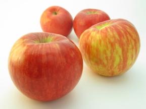 Apple-Onion Pork Chops 2