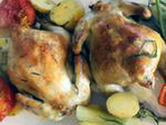 Roasted Cornish Hens with Fennel and Rosemary in an OrangeSauce