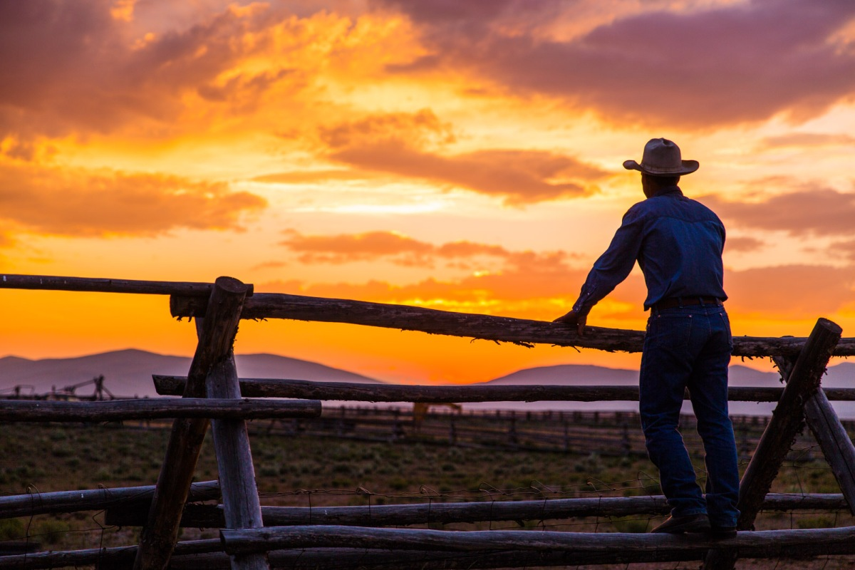 Honoring Big Sky Country with a Big Pan-SearedSteak