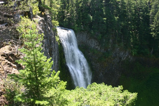 26 Salt Creek Falls (3)