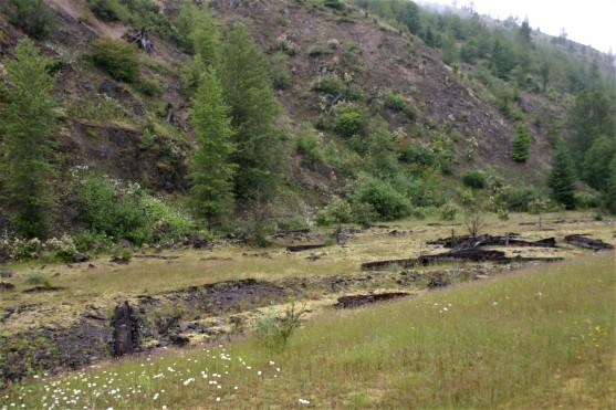 Johnston Ridge Area (13)