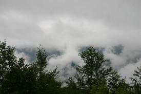 Johnston Ridge Area (5)