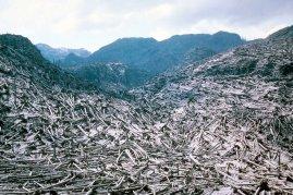 Mount Saint Helen Erupt (3)