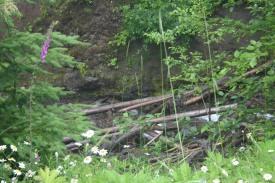 Road to Spirit Lake (11)