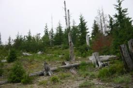 Road to Spirit Lake (17)