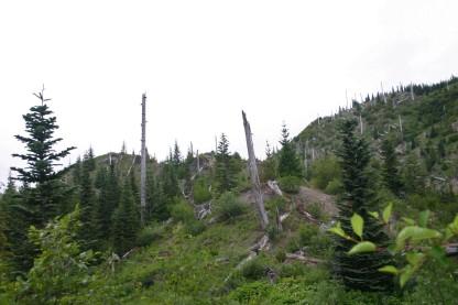 Road to Spirit Lake (22)