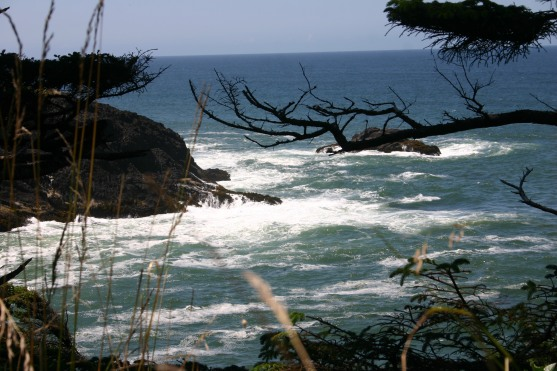 0 Old Hwy 101 south of Depoe Bay (1)