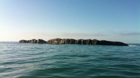 4 Otter Rock1