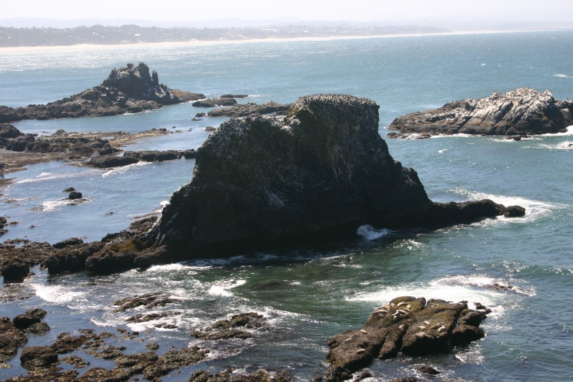 6 Yaquina Head & Lighthouse (4)