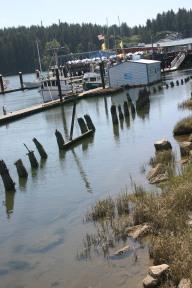 Florence Bay (10)