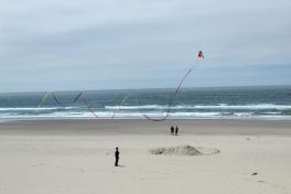 Lincoln City Kite1