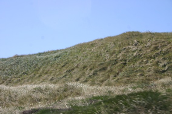 Sand Dunes (1)