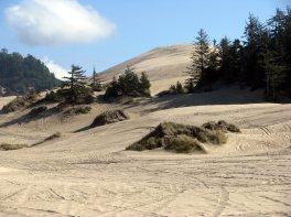 Sand Dunes (7)