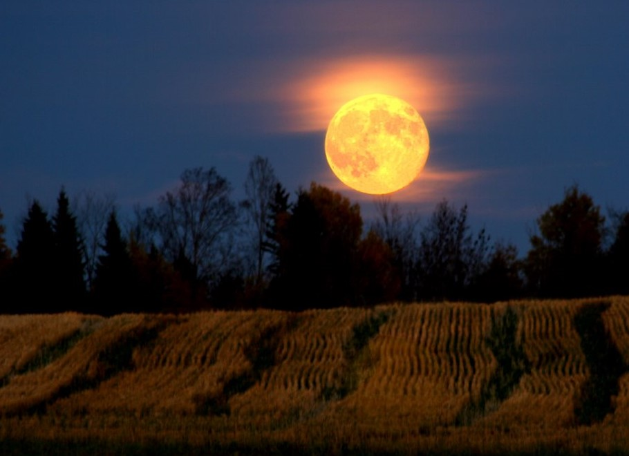 A Harvest Moon is Reason Enough to Celebrate