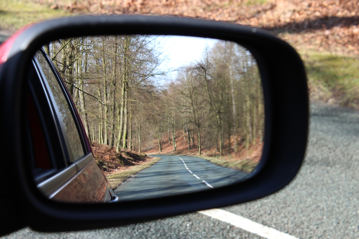 2019 in the Rear View Mirror