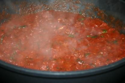 Spicy Shrimp Linguine Marinara ( (5)