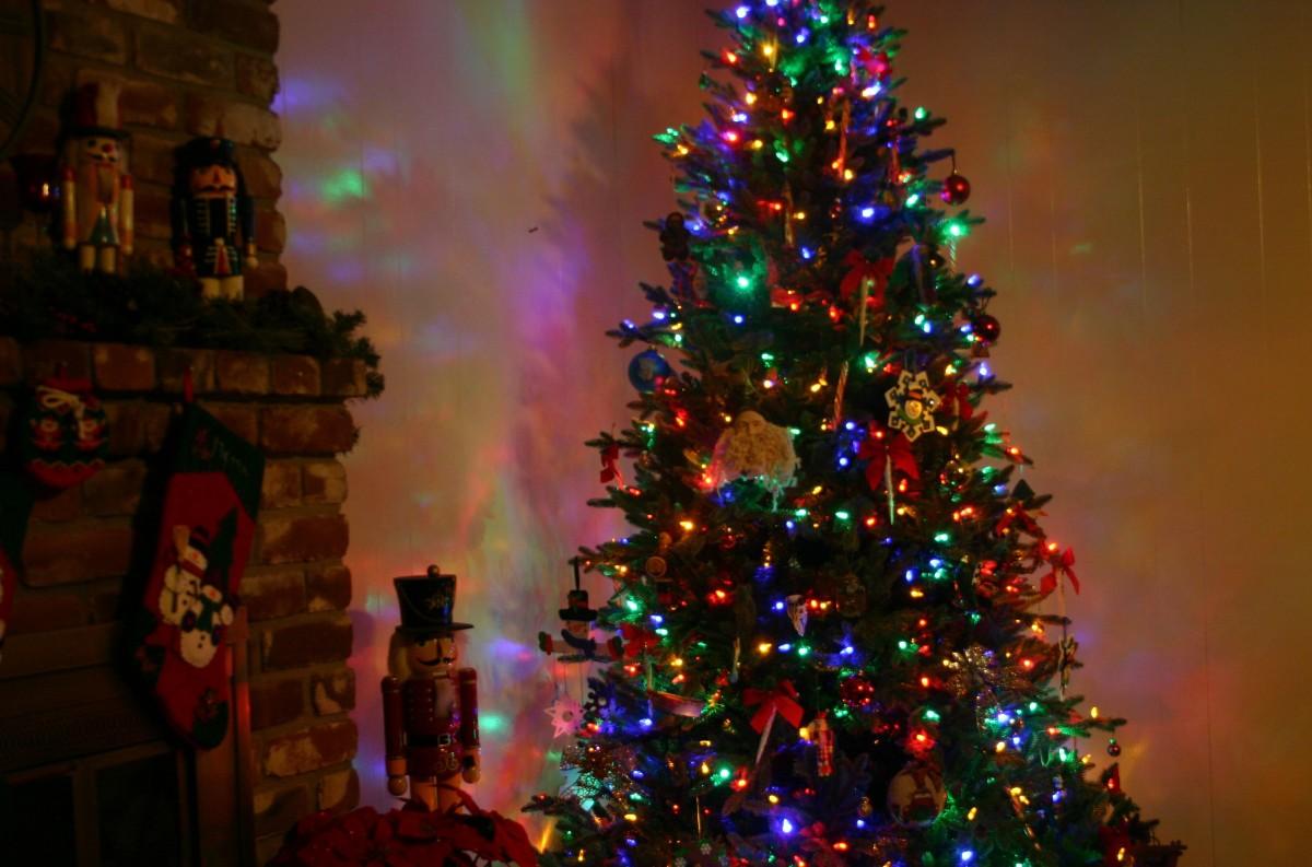 May the Lights of Christmas bringJoy