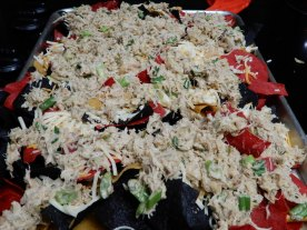 Seafood Nachos (7)