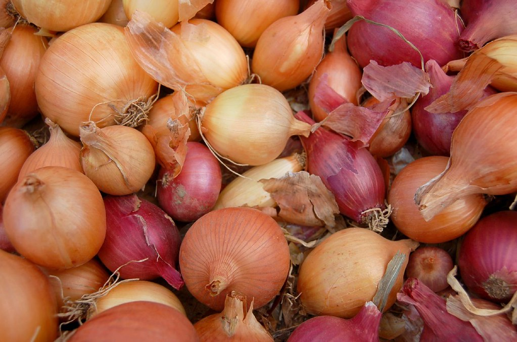 Yep, It's National OnionDay