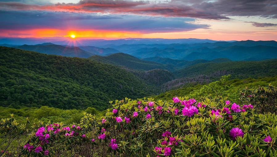 Sweet Carolina – North Carolina ThatIs